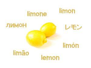 言語 レモン